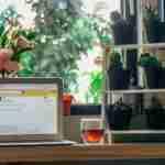 Schön, sicher, diskret: Diese neuen Webbrowser sollten Sie kennen