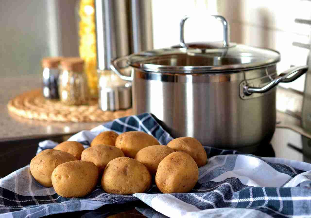 Kartoffel keimend