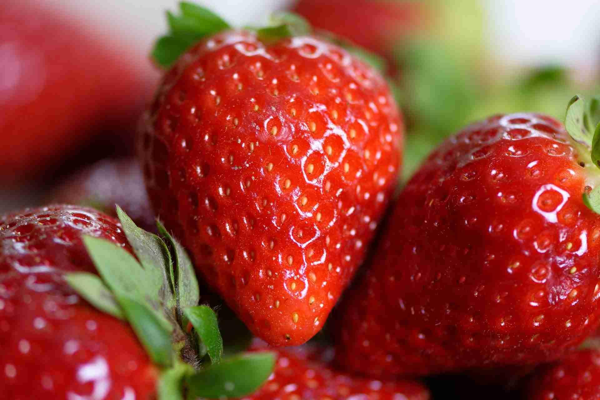 Erdbeeren Kühlschrank