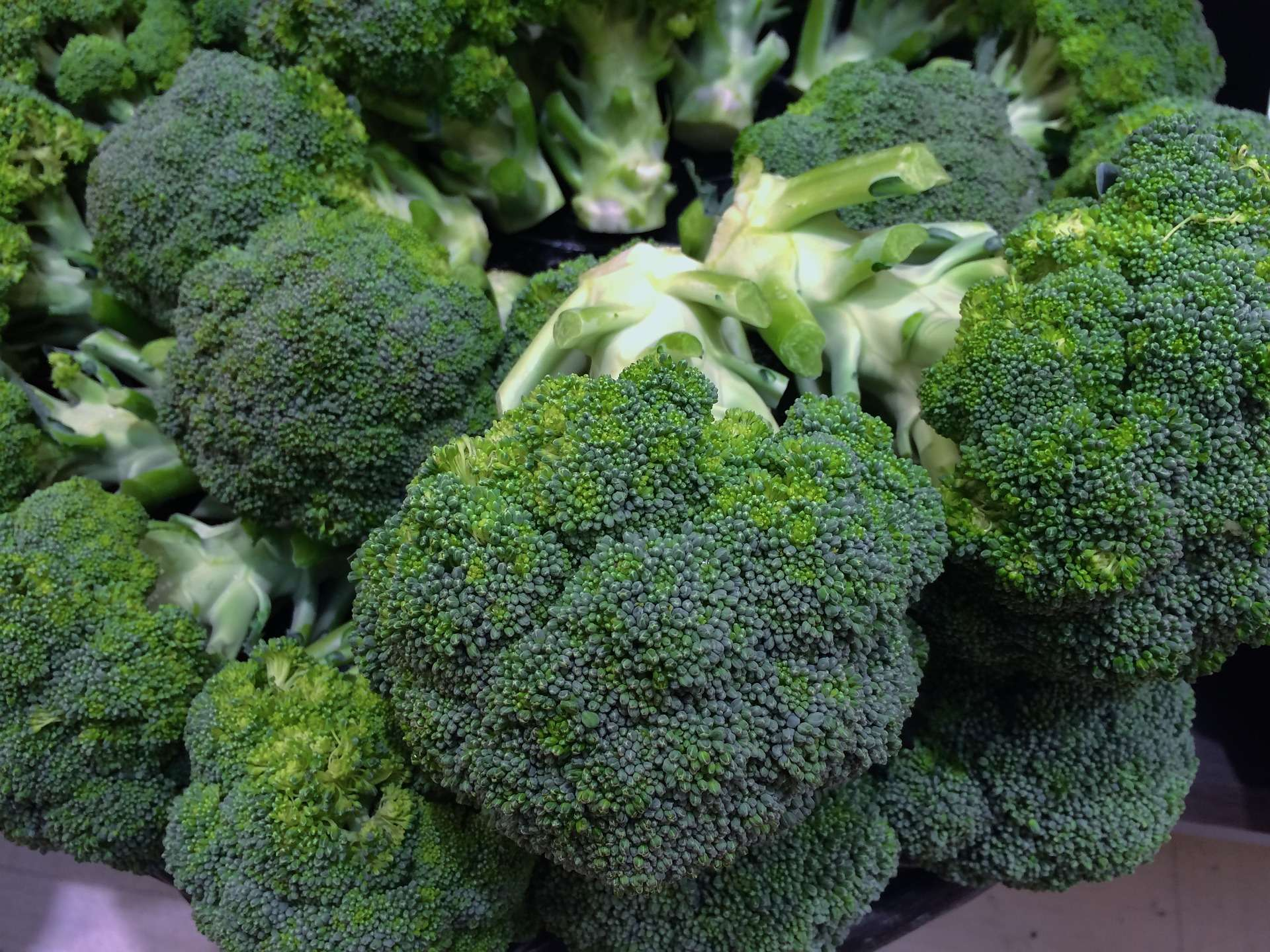 Brokkoli einfrieren Tipps
