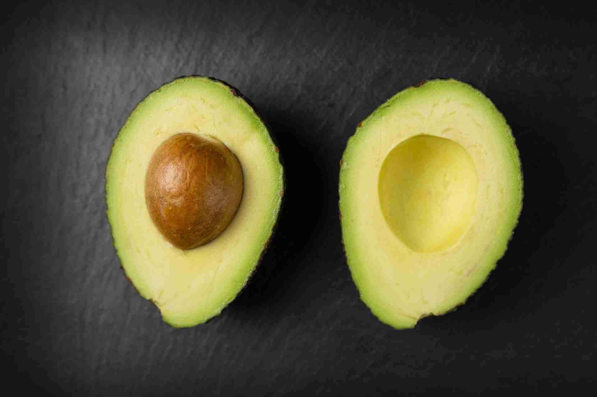 Avocado Kern giftig