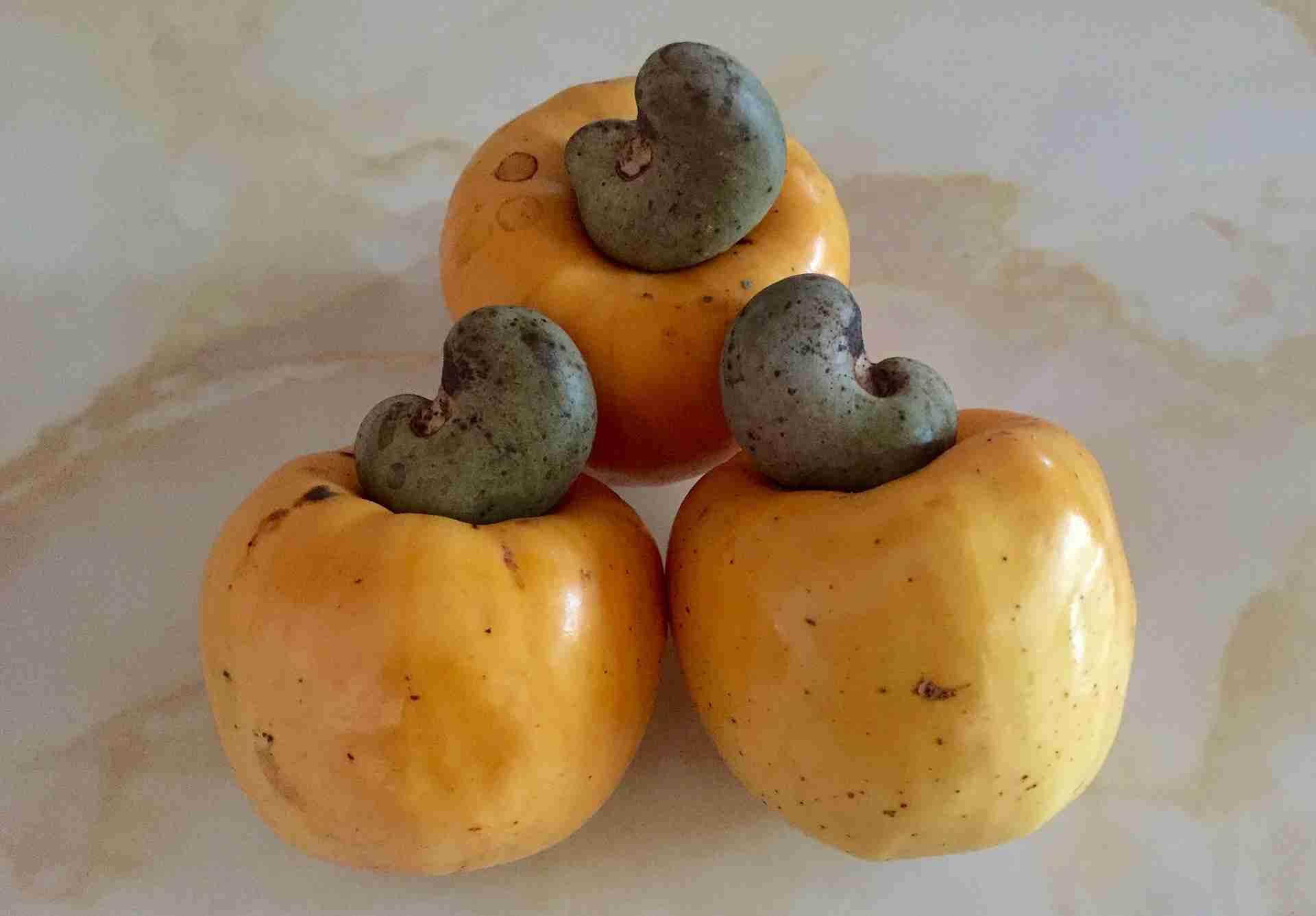 Cashewkerne gesund