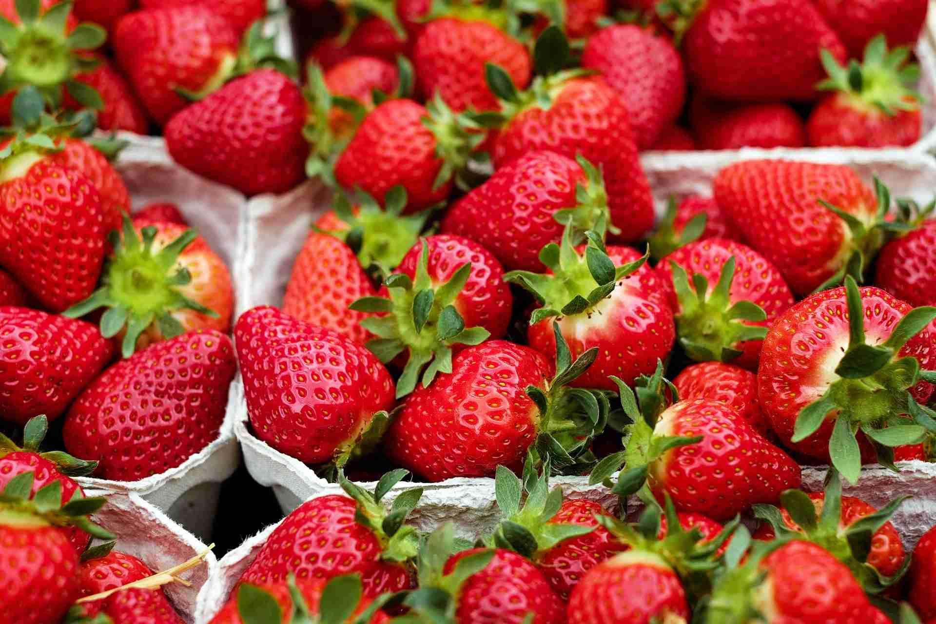 Erdbeersaison Deutschland