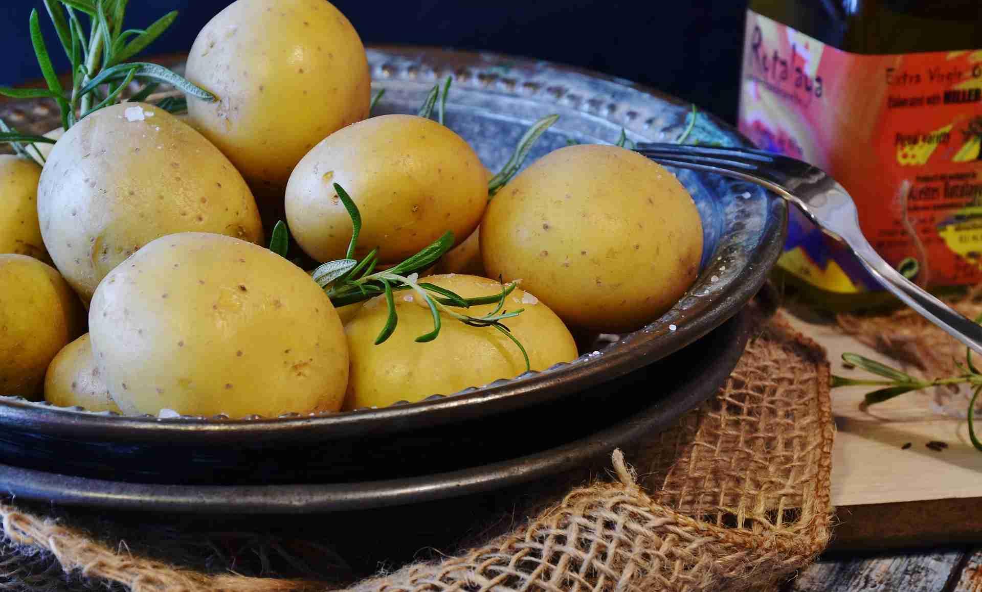 Kartoffeln festkochend Sorten
