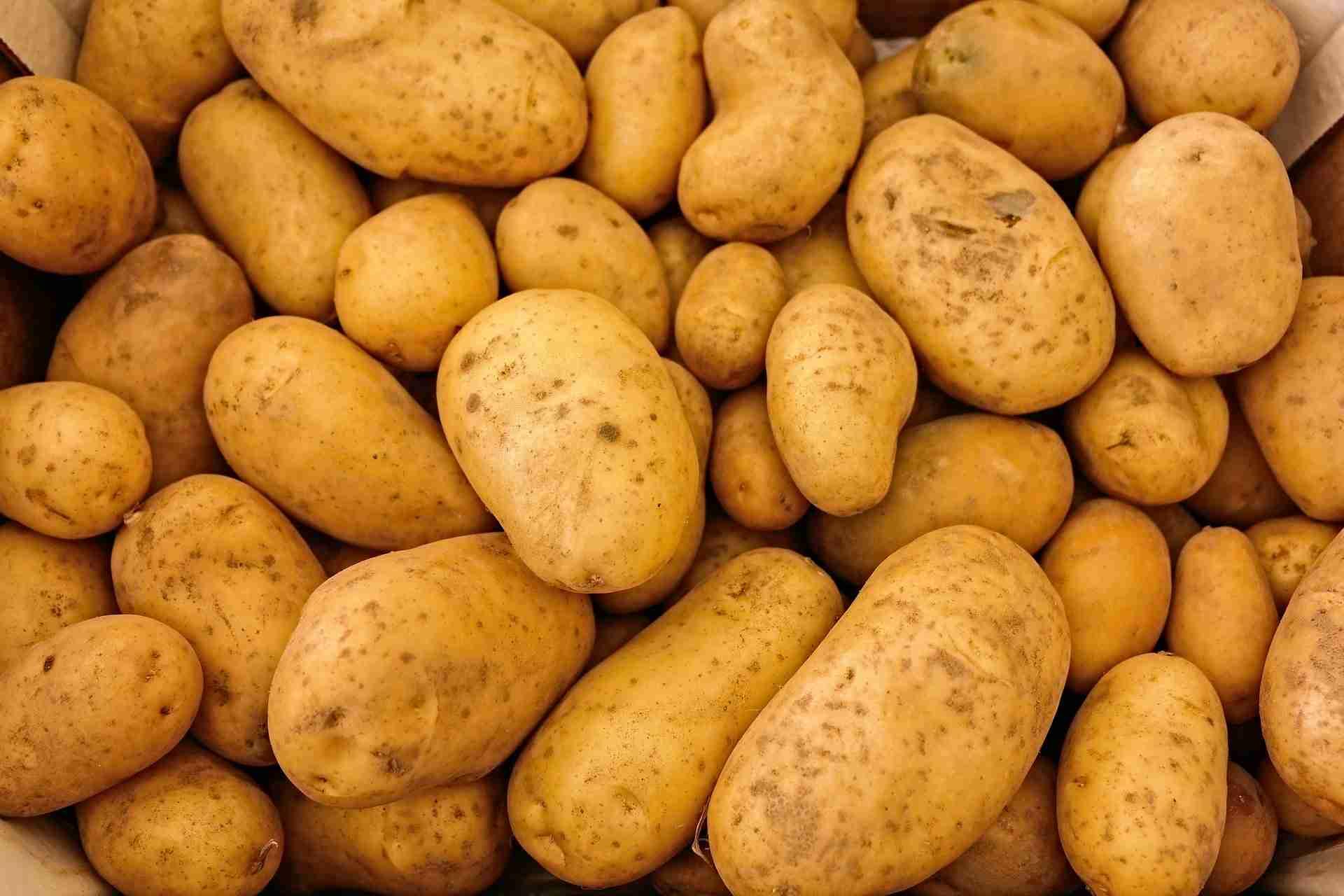 Kartoffeln mehlig Sorten