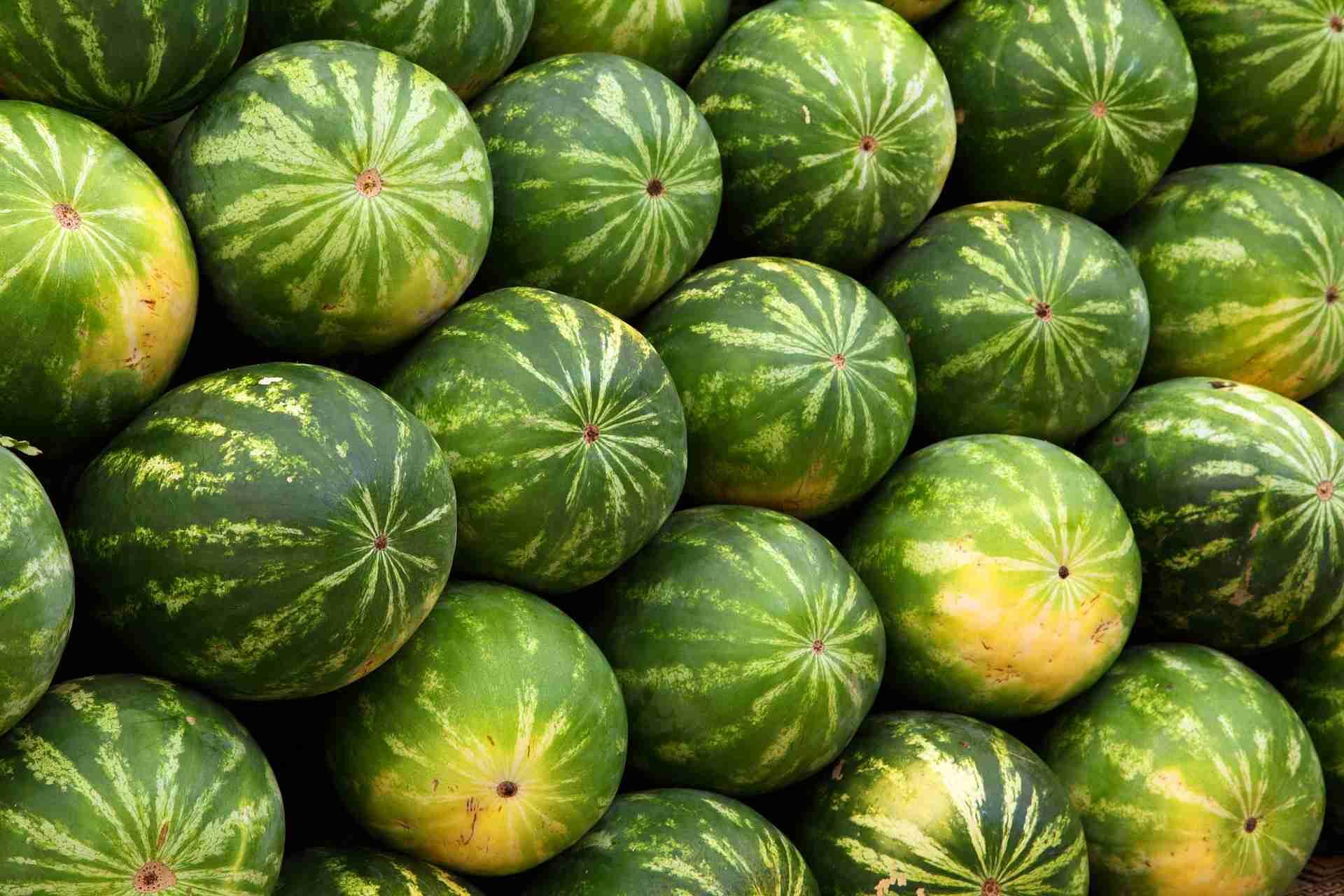 Wassermelone süß