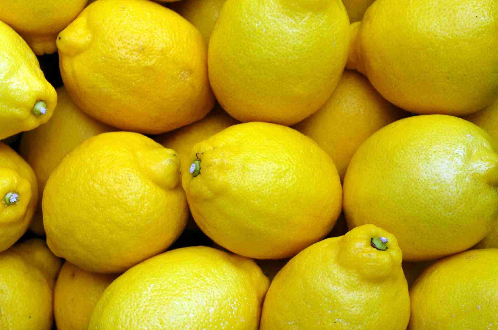 Zitrone pur essen
