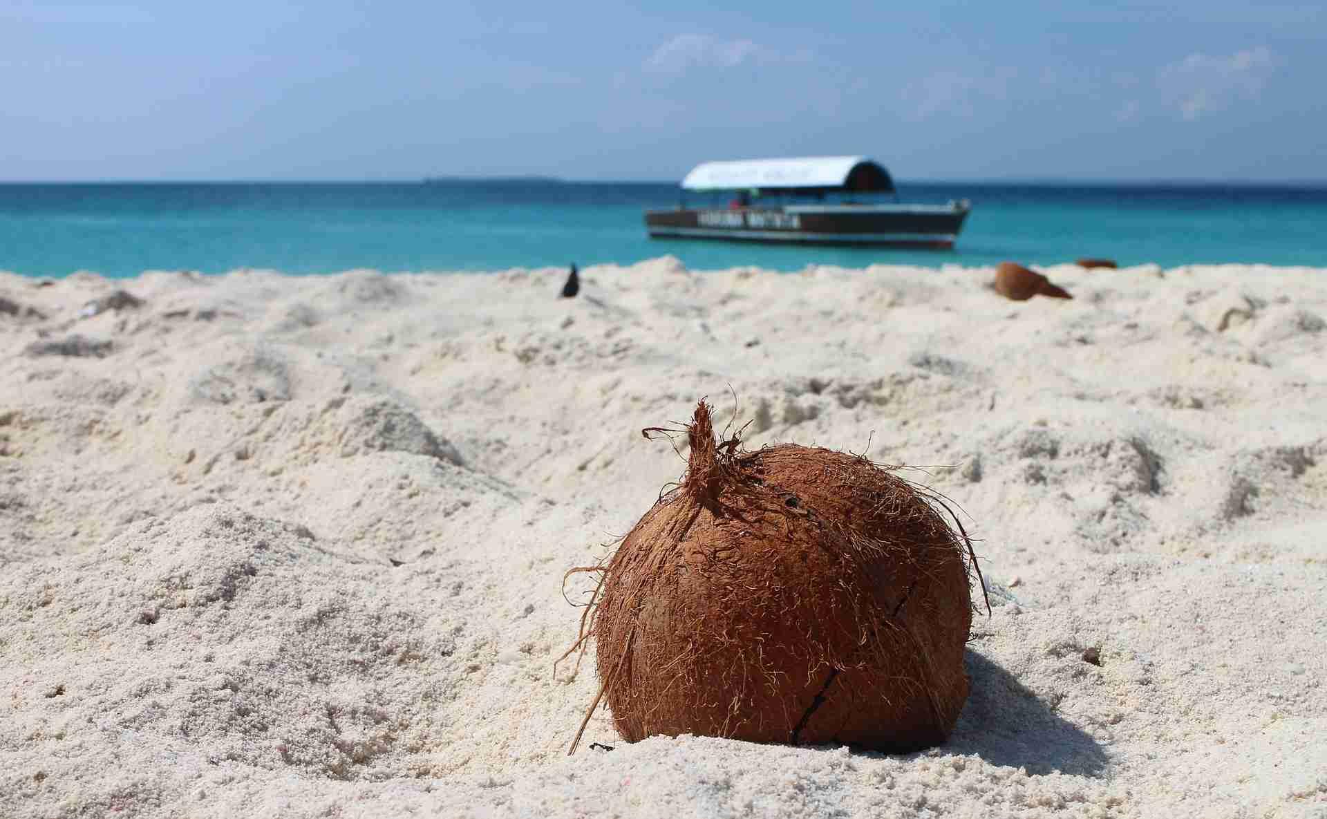 Sansibar Reisezeit