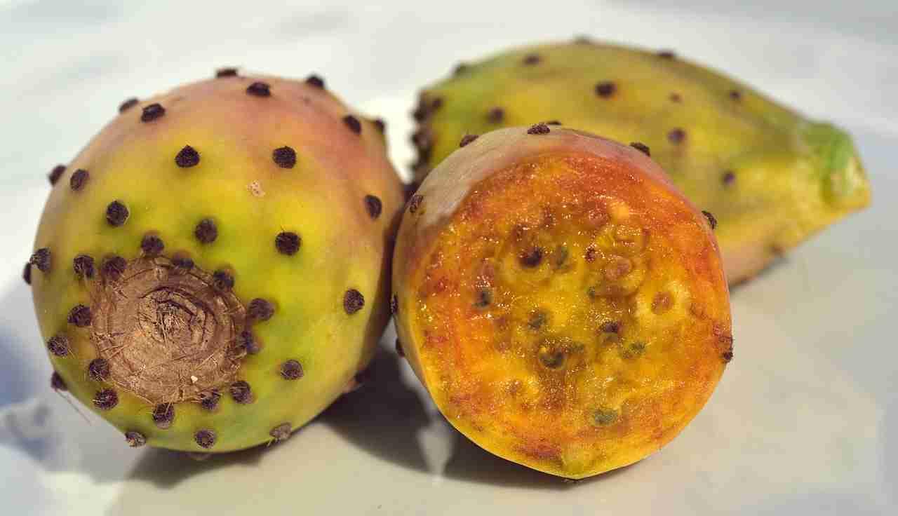 Kaktusfeige essen