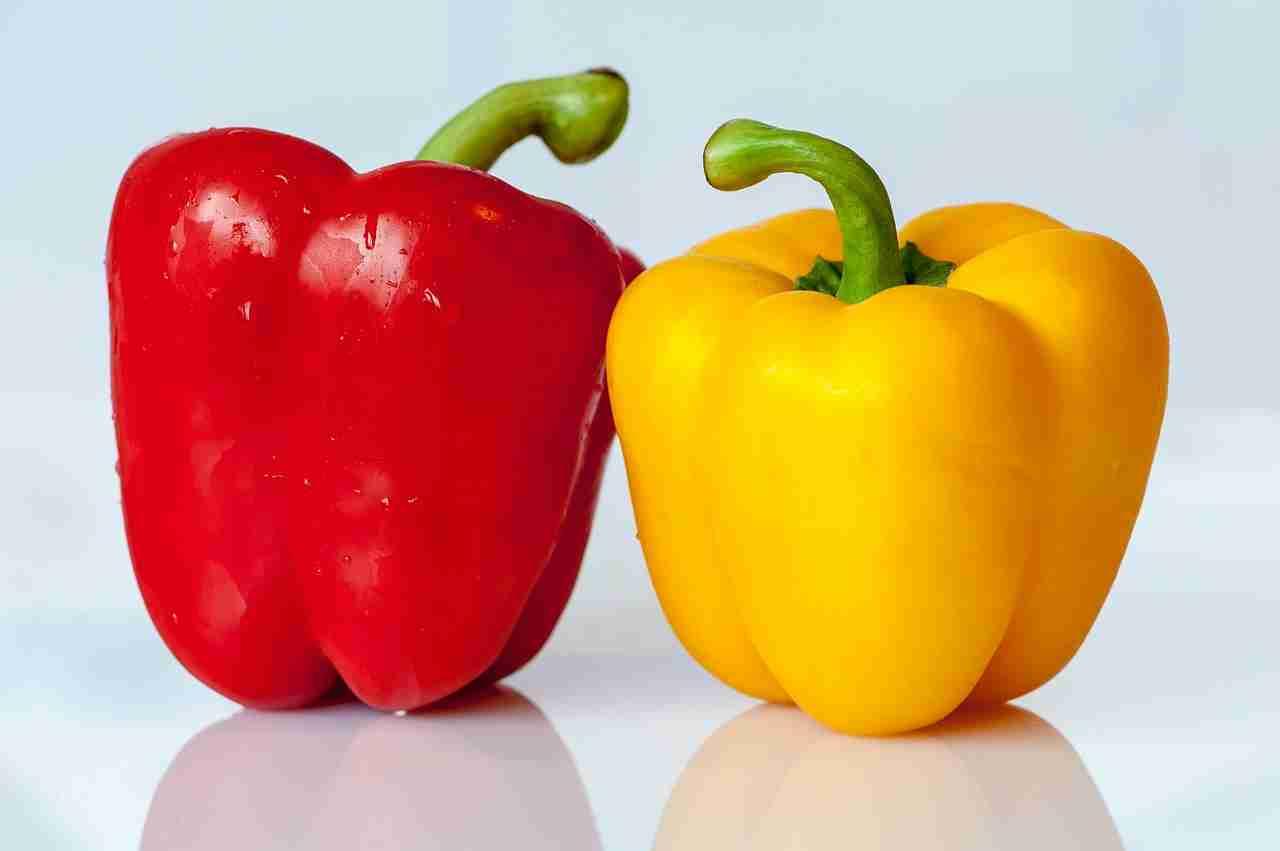 Paprika lagern Tipps