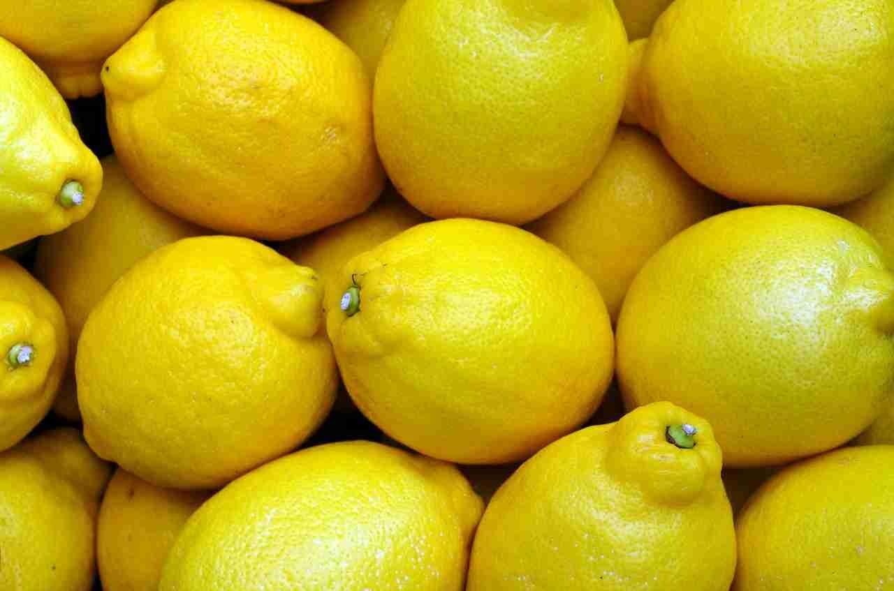 Zitronen haltbar machen