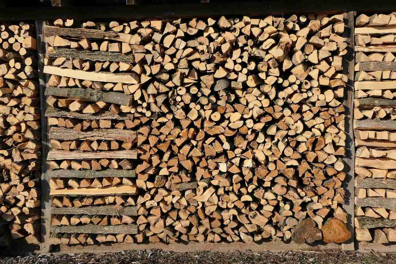 Brennholz schimmelt was tun